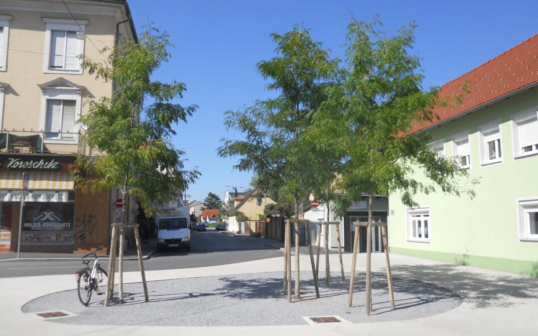 Rettet das Stockholm-System unsere Grazer Stadtbäume?